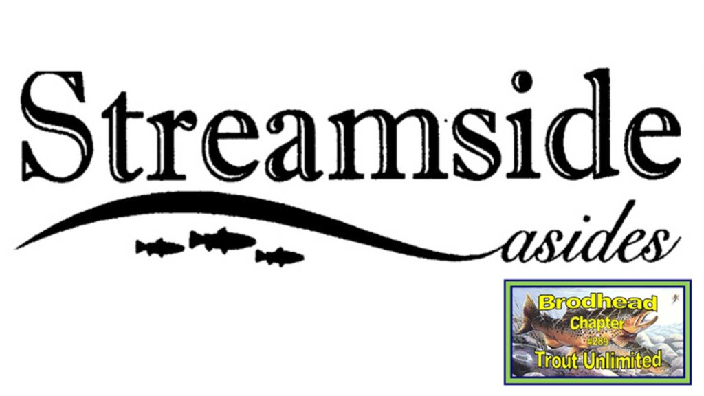 Streamside Asides Brodhead TU Chapter Newsletter logo