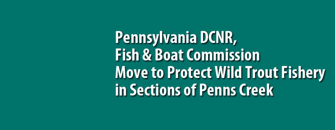 Pennsylvania DCNR, Fish & Boat Commission Move to Protect Wild Trout Fishery in Sections of Penns Creek in Bald Eagle State Forest