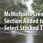 McMichaels Creek