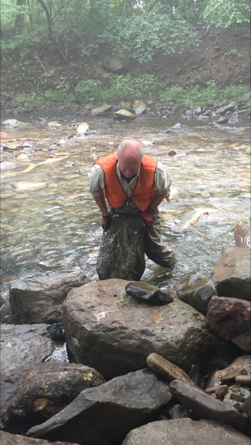 A Volunteer from the Brodhead Chapter Trout Unlimited places a boulder in the Pocono Creek in Tannersville, Pa.